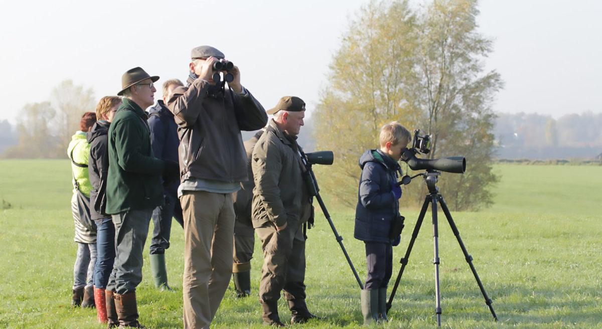 foto-spotters